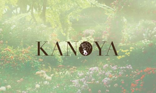 kanoyashiA1_400_2