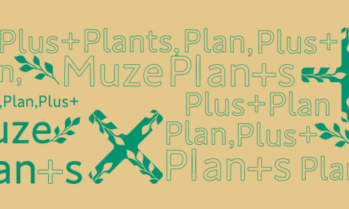 muzeplants_400_2